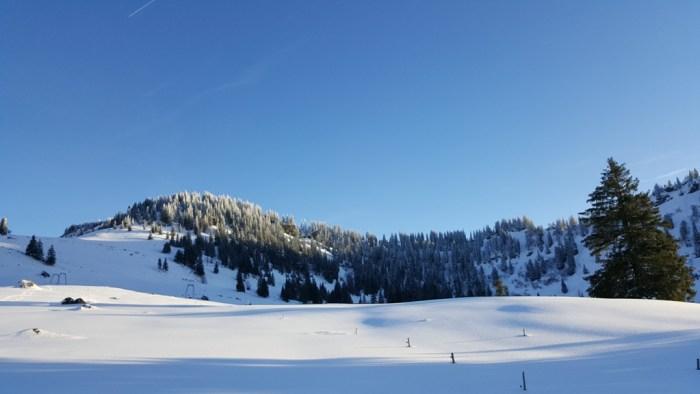 Von der Hörmoos Alpe zur Falkenhütte