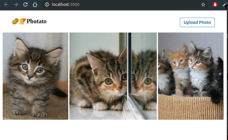 First Look At The App: Kitten Photos