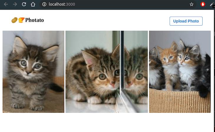 First Look At The App: Kitten Photos