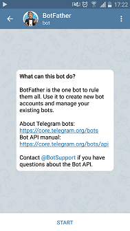 message in chat bot botFather window