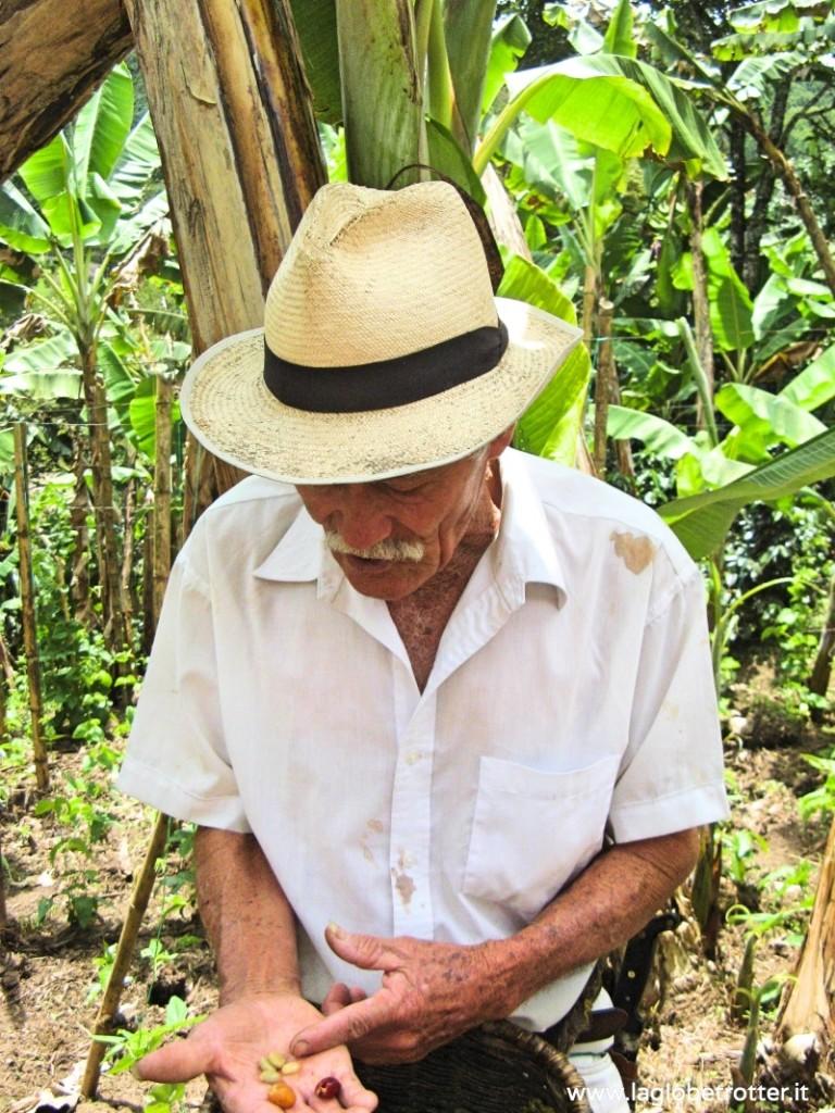 produzione caffè Colombia