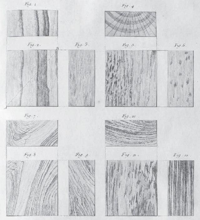 Wood-Tints