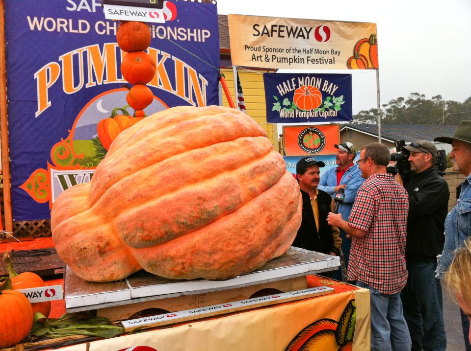 Giant Pumpkin at Half Moon Bay's World Championship Pumpkin Weigh-Off