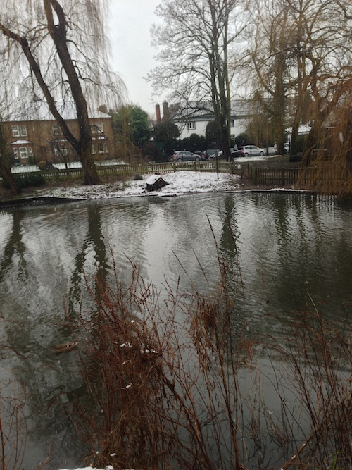 Ruislip Duck Pond – © LoveToEatAndTravel.com