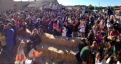 Half Moon Bay World Championship Pumpkin Weigh-Off 2013 – © LoveToEatAndTravel.com