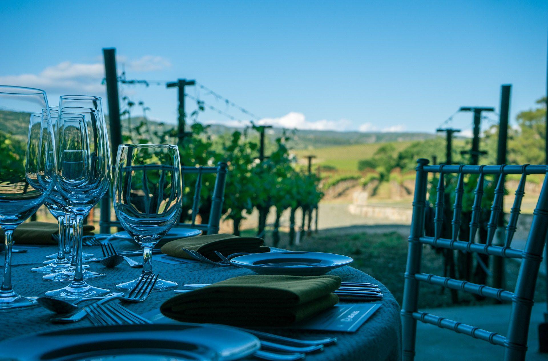 Sonoma Valley Wine-Tasting