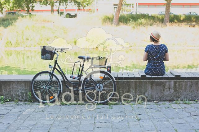 Image en vente sur le site : www.boutique.ludigreen.fr