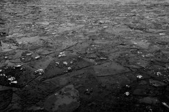 Islagt vann