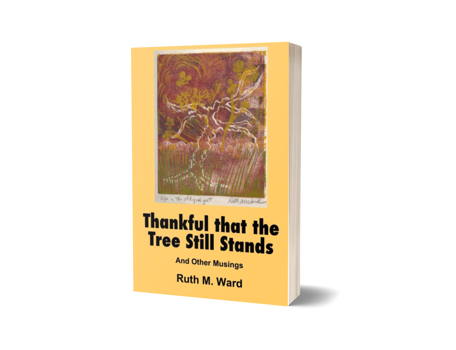 Thankful That the Tree Still Stands- And Other Musings