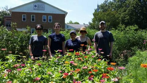 Volunteer Garden
