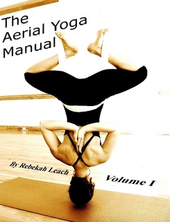 the aerial yoga manual