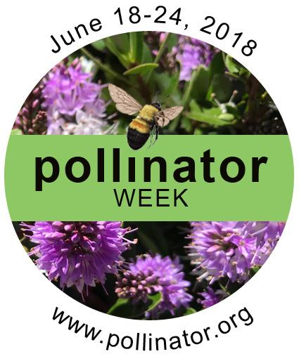 pollinator_week