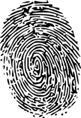 Fingerprint Image
