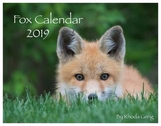 Fox Calendar 2019 by Rhoda Gerig