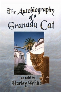 The Autobiography of a Granada Cat