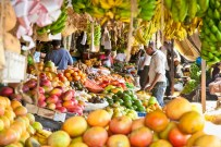 Food Market Tour