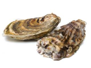 oysters is a vitamin b12-rich foods