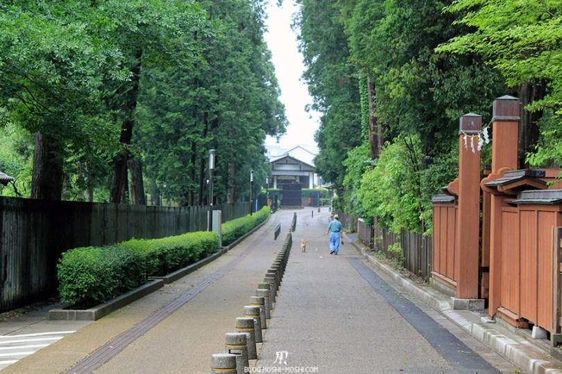 kairakuen jardin-japonais-kairaku-en-longue-allee-promenade-chien