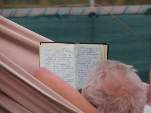 professors diary