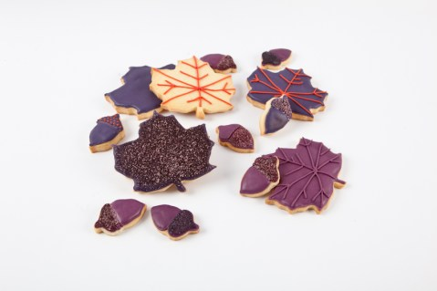 Biscuits-automne1