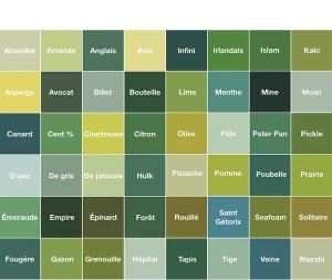 Palette de couleurs chambre jungle