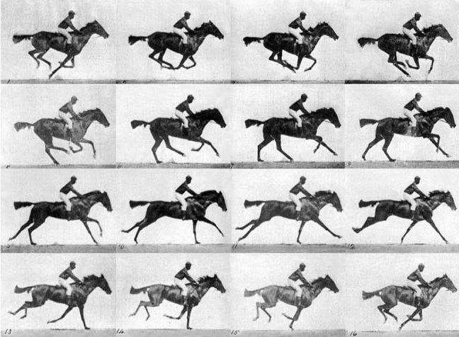 A sequência fotográfica Horse in Motion