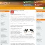 Flat design + Less framework + WordPress = Our new responsive Blog design