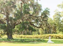 Airlie Gardens Wilmington NC Wedding Photographer   Sharon ...