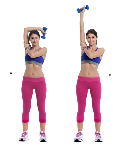 Photo exercice extension triceps