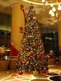 xmas_tree_ihotel.jpg