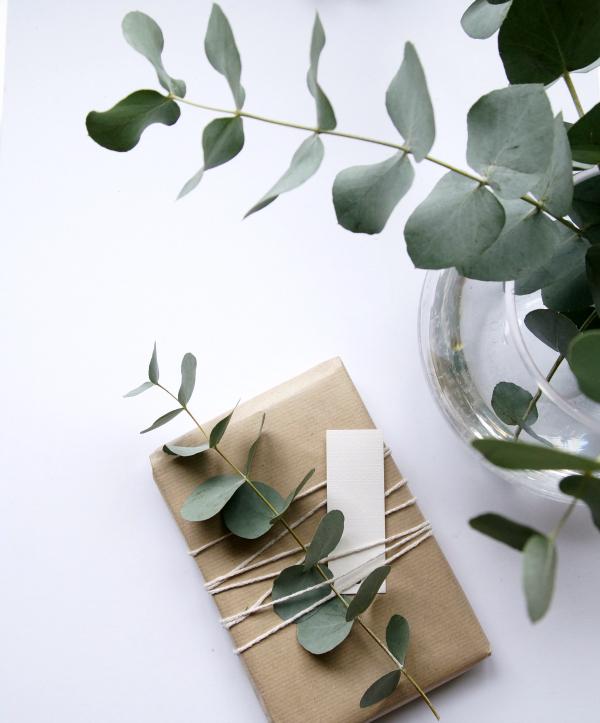 Idée DIY pour un emballage cadeau en kraft avec une branche d'eucalyptus