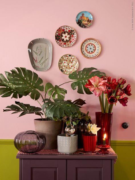 Une idée déco originale pour des plantes d'intérieur