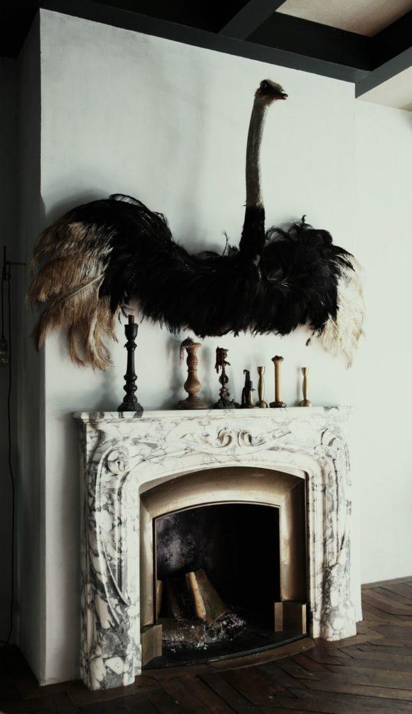 Une autruche empaillée au dessus d'une cheminee