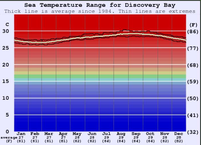 Average sea water temperature in Discovery Bay Jamaica