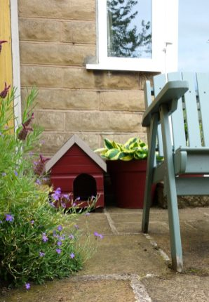 cat kennel rich berry garden shades and hosta