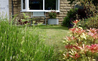Zinc Trough Planter Primrose
