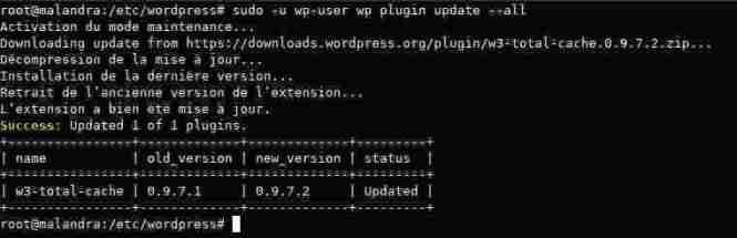 Mettre à jour tous les plugins installés avec wp-cli