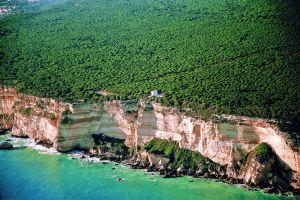 Parque nacional de Barbate (Marismas)