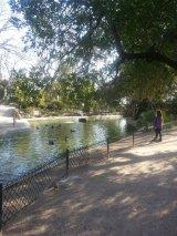Avignon en famille - Jardin des Doms 2