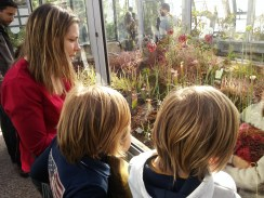 Découvrir Lyon avec les enfants - Parc de la Tête d'Or 4