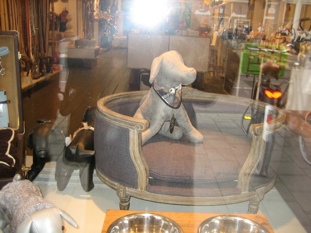 Dog Mannequins Enhance Sales and Store Windows