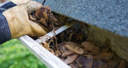 Essential Household Jobs For February