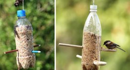 16 Easy And Creative Plastic Bottle Crafts