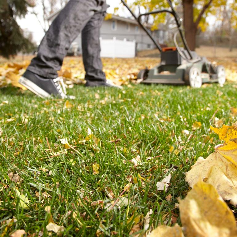 how to deal with autumn leaves falling fall clearing clean autumnal lawn mower