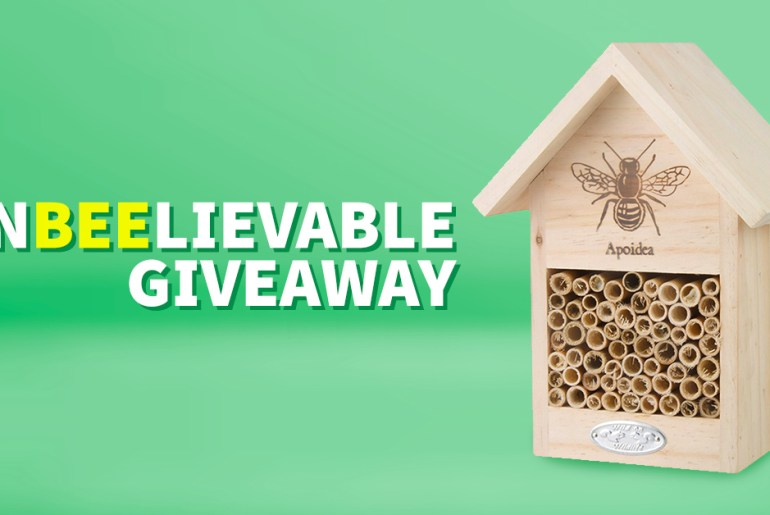 manomano mano mano the handy mano giveaway free competition win bee hotel enclosure insect house home