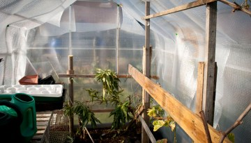 Top 5 Tips for Greenhouse Heating