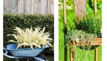 Garden Design – Spring Garden Planter Ideas