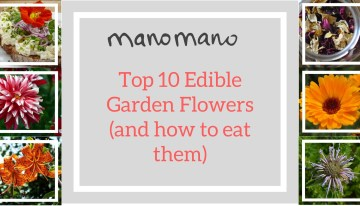 National Gardening Week – Top 10 Edible Flowers