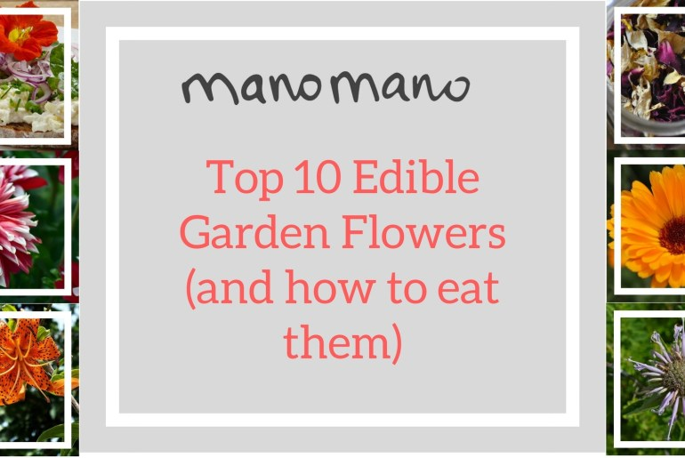 the handy mano manomano edible flowers cover photo
