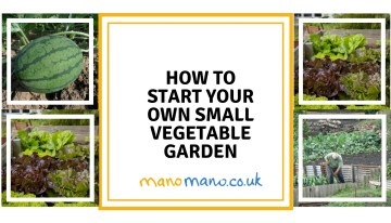 Small Vegetable Garden Design Tips